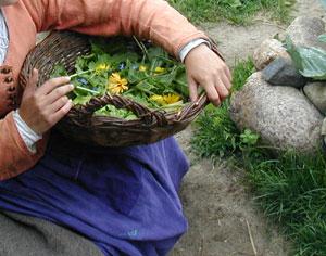 recoger-hierbas