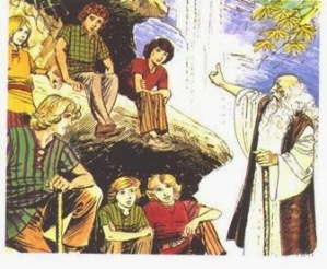 druid teaching
